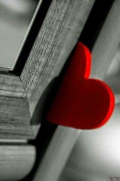Red heart stuck in a door Heart In Nature, Heart Art, Heart Wallpaper, Love Wallpaper, I Love Heart, Happy Heart, Color Splash, Color Pop, Splash Art
