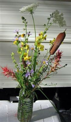 Queen Anne's Lace and Cat Tails!!! Also in this bouquet Indian Paintbrush, Bluebells, Wild Aster, Verbascum and Goldenrod. I would love this for my bouquet!!!!!