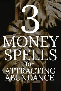- This universe is abundant. There is no shortage; the universe is dripping with infinite abundance. Here are some simple practices, spells, rituals, and tools you can incorporate for a more abundant life. Powerful Money Spells, Money Spells That Work, Spells That Really Work, Lake Michigan, Wisconsin, Influencer Marketing, Need Money, How To Make Money, Milwaukee