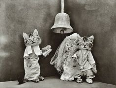 Harry Whittier Frees was an American photographer who created novelty postcards and children's books based on his photographs of live, posed animals