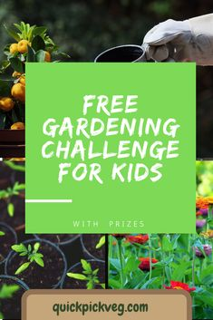 The course has started but it's not too late to sign your kids up to take part in this fun challenge.