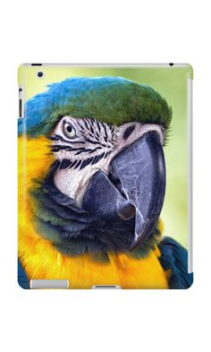 'Macaw Parrot' iPad Case/Skin by Vicki Field Ipad Case, Parrot, Cases, Apple, Bird, Animals, Parrot Bird, Animales, Animaux