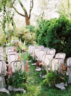 Gauze-covered chairs and an aisle lined with potted plants made this outdoor wedding ceremony space feel like a secret garden. Wedding Ceremony Ideas, Ceremony Backdrop, Outdoor Ceremony, Wedding Ceremonies, Wedding Aisles, Ceremony Seating, Wedding Backdrops, Tent Wedding, Party Wedding