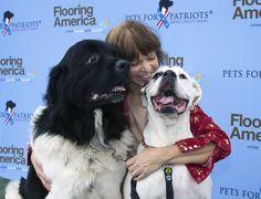 No that's love! #petsforpatriots #bigdogs #puppylove #doglover