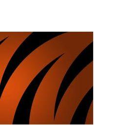 Cincinnati Bengals Football Team Logo Public Domain Fair