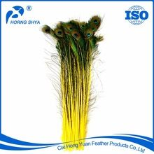Peacock Feather, Peacock Feather direct from Cixi Hong Yuan Feather Products Co., Ltd. in China (Mainland)