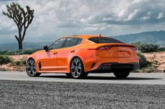 - This stinger is limited to 800 pieces In New York Kia shows the Stinger GTS with drift mode. It has been around for a long time in Europe. Kia Stinger, Kia Motors, Roll Cage, Bmw, Fancy Cars, Sports Sedan, Unique Cars, Twin Turbo, Automatic Transmission