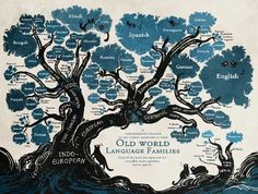 Let's start at the beginning: what is a language family? A language family is a group of several languages that share linguistic links, having derived from […] European Languages, World Languages, Languages Online, Learn Languages, English Romance, Learn Brazilian Portuguese, Learn Hebrew, Spanish Language, Foreign Language