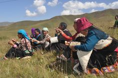 tibetan women laughing - Google zoeken