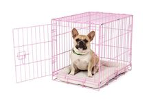 Carlson Pink Secure and Compact Single Door Metal Dog Crate, Small *** Find out more about the great product at the image link. (This is an affiliate link and I receive a commission for the sales) #DogCare