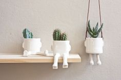 Image of PACK 3 Macetas, 30% descuento // Pack 3 pots, 30% off