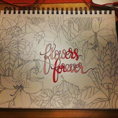Flowers from our afternoon stroll at Mount Coot-tha.  Drawing has never come easily to me but these days I'm enjoying it, thanks to some pointers from @alisakburke 's #drawwithme course. Love mixing it up with @ckelso 's #betterletteringcourse #forever.  PS if I find the guts I'll add colours to the flowers later in in the week! #flowers #mountcoottha #brisbane #sketch #lettering