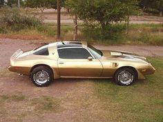 1981 Firebird Trans Am