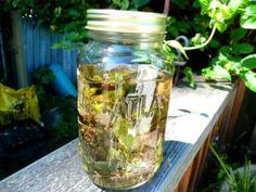 Earth's Herbal Sun Tea
