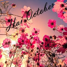 hi october... be nice month please