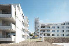 Genossenschaft Schönheim Wohnüberbauung in Urdorf Auftragsart: Wettbewerb, 1. Preis Projekt: 2009 Ausführung: 2011-2013