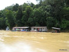 Rejang River, Borneo
