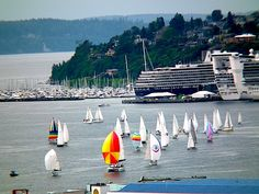 Sail boats and a cruise ship in Elliot Bay Seattle