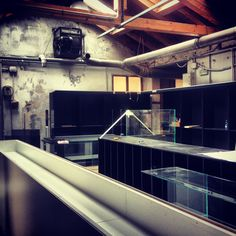 #wood #glass #metal