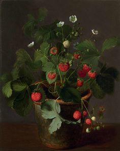 Cornelis van Spaendonck - Поиск в Google