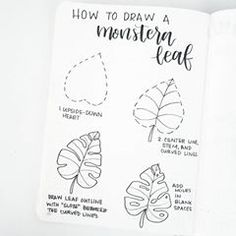 Hi friends, glad to be back posting! Here's a simple tutorial to draw a monstera leaf. Play with the shape and the number of slots and holes. Enjoy!!!