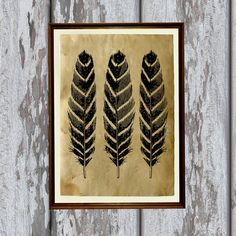 Antique illustration Feather prints Old paper Animal poster AK35
