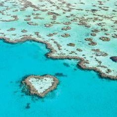 Meus amigos queridos hoje acordei com a surpresa de ter alcançado 10k seguidores e não pude conter  a vontade de compartilhar essa alegria com vocês que me acompanham e me incentivam sempre! Adoro ler seus comentários e vê-los viajando sonhando se inspirando a conhecer este planeta tão rico em natureza cultura história arquitetura pessoas! Obrigada de coração!  Falando em coração este é o Recife de Coração (Heart Reef) que compõe a belíssima região de Withsundays Islands na costa leste da…
