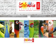 "Check out new work on my @Behance portfolio: ""Calendario Aves Colombia 2016"" http://on.be.net/1LqHECh"