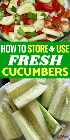 Food Preservation and Garden Recipes- do you have a ton of cucumbers and don't know what to do with them? Check out all the ways to use fresh cucumbers- plus the correct way to store them! Cooked Cucumber, Cucumber Uses, Cucumber Canning, Cucumber Recipes, Veggie Recipes, Healthy Recipes, How To Store Cucumbers, Freezing Cucumbers