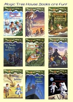 Magic Tree House Book Series are a wonderful series for 2nd and 3rd graders.
