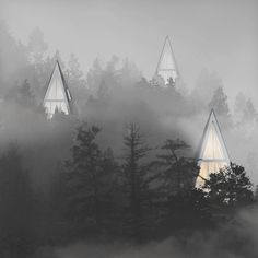 Modern Eco-Friendly Homes Set Amongst the Trees - Primeval Symbiosis (Single Pole House) is an architectural design project by architecture student and interior designer Konrad Wójcik that seeks to organically install living spaces in forests without disrupting the innate beauty of nature. / The Green Life <3
