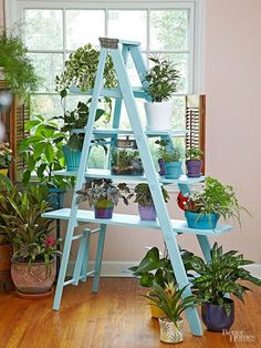 Add a new level to your home decor by incorporating a ladder into the mix. We show you how to upcycle an old ladder to hang towels in your bathroom, hang mason jars filled with flowers, use as a bookcase or display large potted indoor plants. All your wooden ladder needs is a little paint and DIY love to become functional rustic decor! by miriam