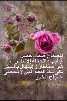 : للصباح صَمتٍ جَمِيلْ   أَطْيب مَاتَحمله الأَنفَاس  هُو اسْتِغفَارٌ و إِبْتِهالٌ بِالشُّكرِ  عَلى تِلكَ النِّعمْ التِي لآ تُحصَى   صباح الخير