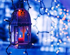 Blue Christmas Lights - Bing Images
