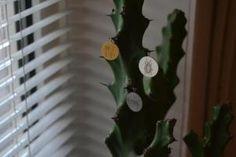Follow the link for beautiful budget friendly jewelry!! #hvisk #hviskjewellery #smykker #sølv #silver #guld #gold #rhodium #rhodineret #rosegold #rosaguld #neckless #halskæde #bracelet #armbånd #fingerring #earring #ørering #inspiration #billig #cheap #budget #fashion #mode #smuk #beautiful #love #vedhæg #letter #lovetag #tag lovetags #love tag #kyliejenner #follow4follow #quotes #fit #fitlife #food #inspo #instagram