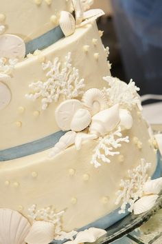 Edible coral Pieces for cake!