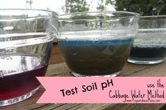 Testing Your Soil pH Without a Kit - fruit and vegetable plants that thrive in acidic soil, those that prefer alkaline soil Gardening Books, Vegetable Gardening, Planting Vegetables, Gardening Tips, Organic Gardening, Water Garden, Lawn And Garden, Photo Link, Soil Ph