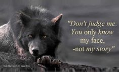 Don't judge me. You only know my face - not my story.  From www.facebook.com/pages/Let-the-wolves-run-free/311695508857755