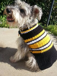 c930a8a4b Let your pooch be the fashion hit this football season with this smart Pittsburgh  Steelers dog