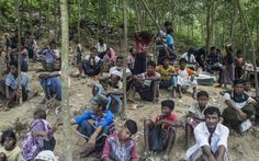 FOW 24 NEWS: Myanmar makes proposal to take back Rohingya refug...