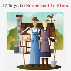 """Whether in a large way or small, almost everyone thinks about homesteading at some time in their life. Alas, homesteading in the classic sense is not always possible. Still, there are ways we can homestead without ever leaving home. I call that """"homesteading in place"""". Learn how. 12 Ways to Homestead in Place   Backdoor Survival"""