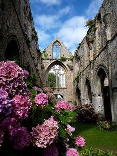 Abbey De Beauport, Paimpol, Cotes, d'Armor, Brittany, France
