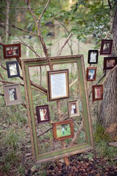 tree picture frame branches photo display wedding DIY decorations