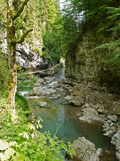 Gorges du Breitachklamm près d'Oberstdorf en Allgäu - Bavière