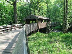 Walking Bridge at Wildwood