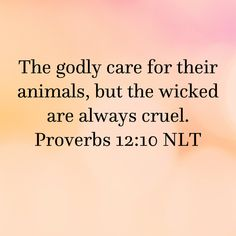 Proverbs The godly care for their animals, but the wicked are always cruel. Prayer Scriptures, Scripture Verses, Bible Verses Quotes, God's Wisdom, Wisdom Quotes, Christian Living, Christian Faith, Bible Proverbs, Healing Verses