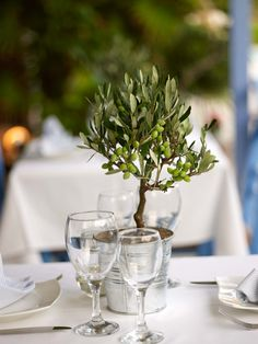 Ideas Olive Tree Wedding Table Decor For 2019 Olive Wedding, Greek Wedding, Floral Wedding, Wedding Flowers, Tree Wedding Centerpieces, Wedding Decorations, Christmas Tree Decorations, Decor Wedding, Wedding Themes