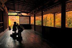 京都に紅葉