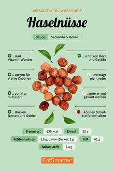 Das solltest du über Haselnüsse wissen | eatsmarter.de #haselnüsse #nüsse #infografik
