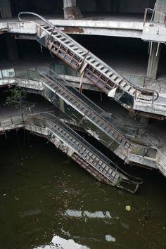 An abandoned shopping mall full of fish | Dangerous Minds
